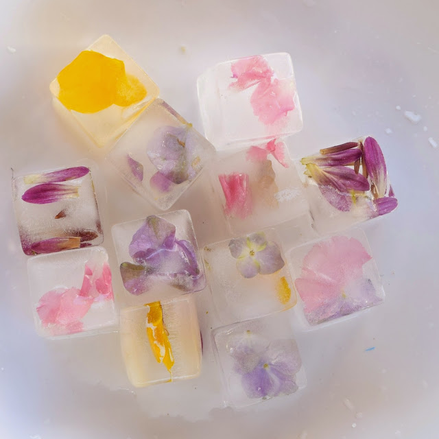 homemade floral ice cube recipe