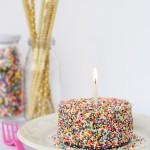 Mini Funfetti Sprinkles Cake Recipe