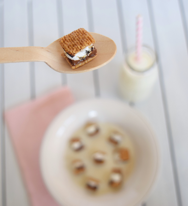 Mini S'more Cereal