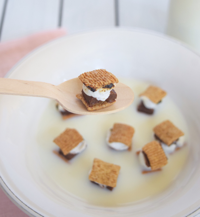 Mini S'mores Cereal