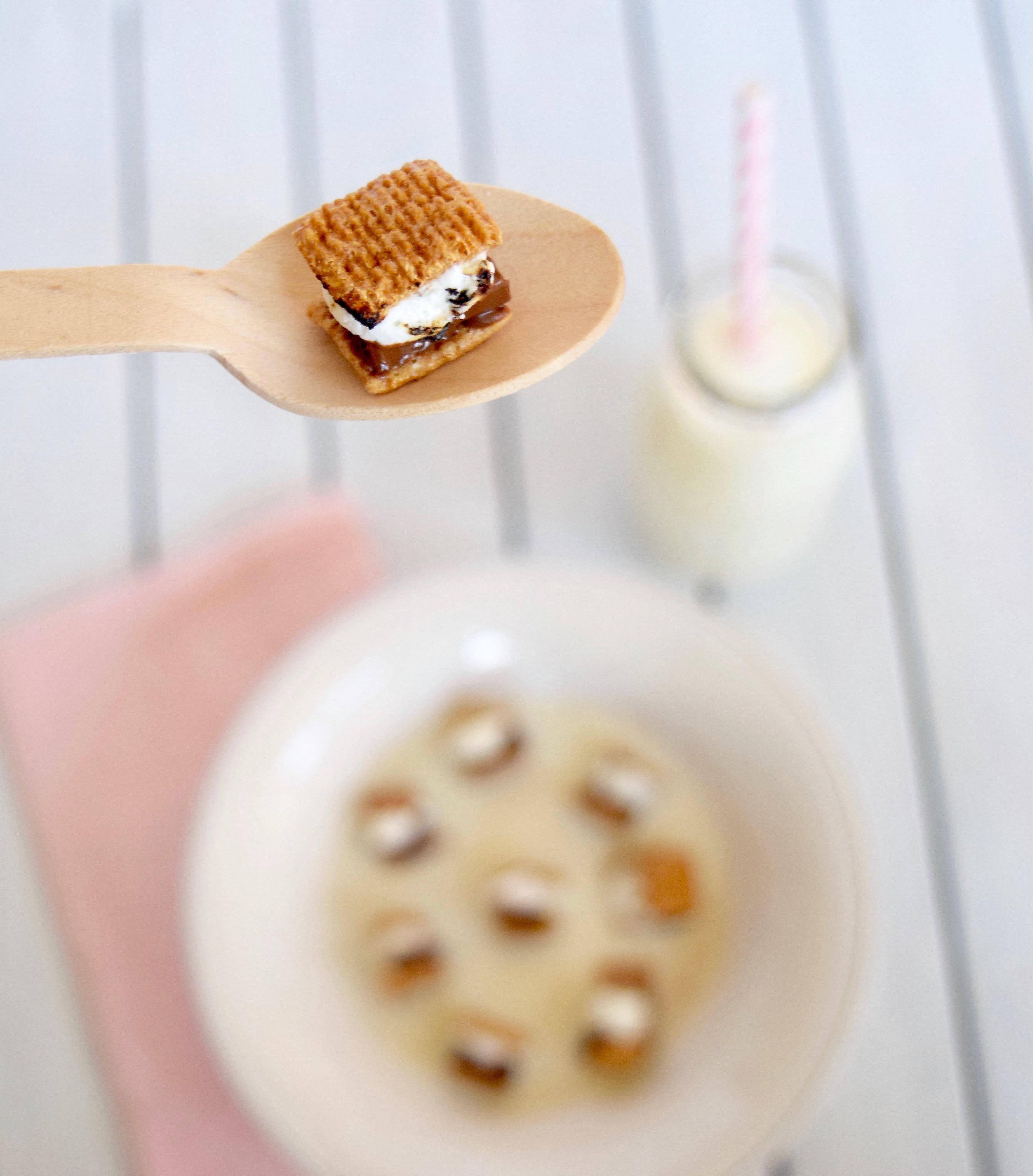 Mini S'mores Cereal Recipe