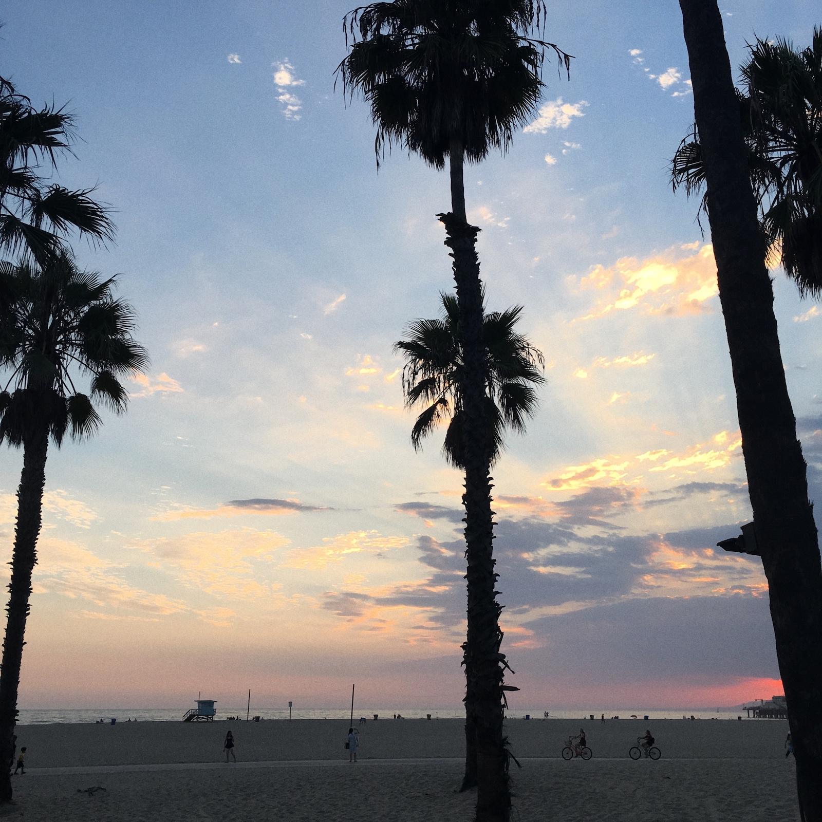 Santa Monica City Guide