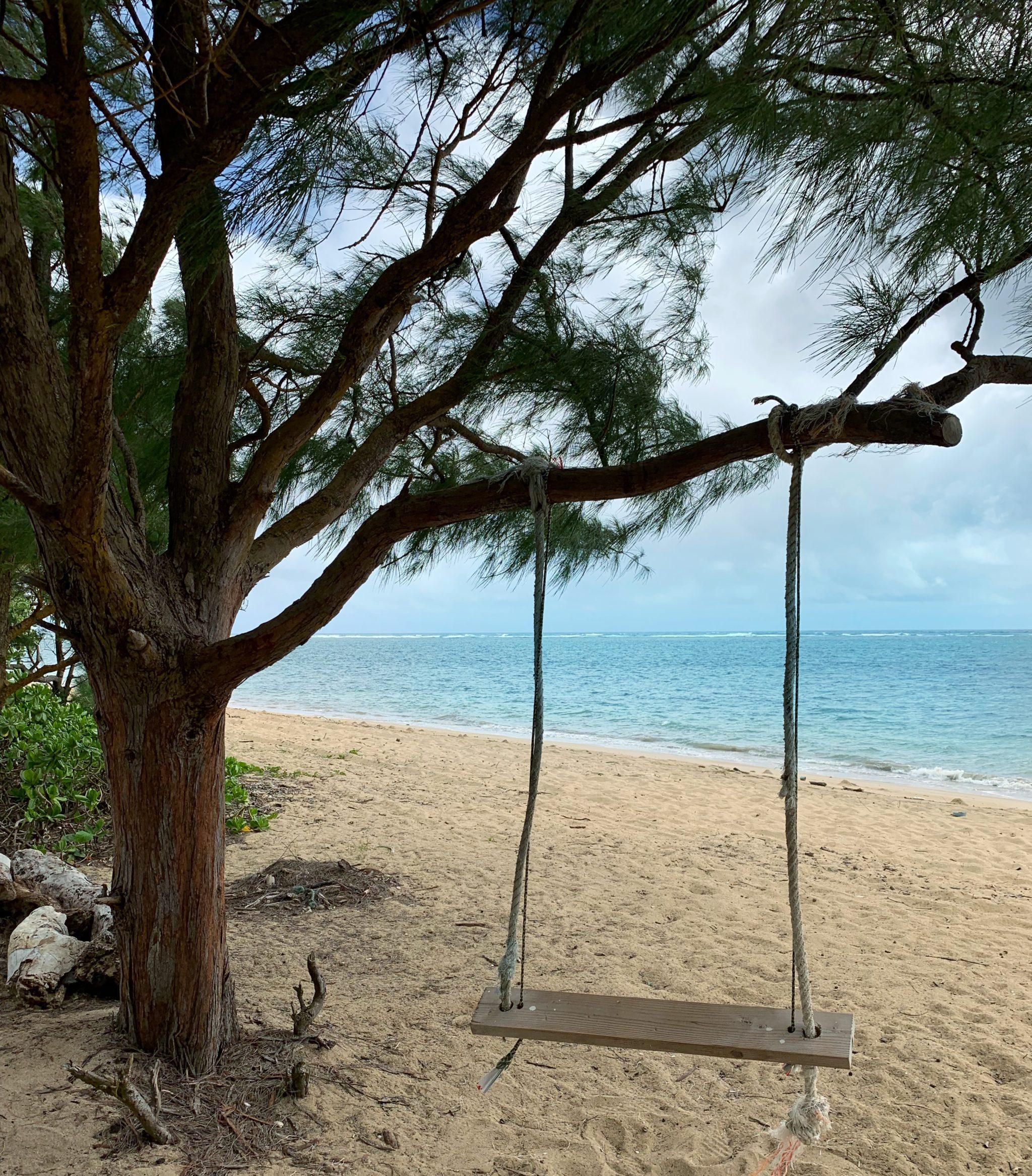 Tree Swing Beach Oahu