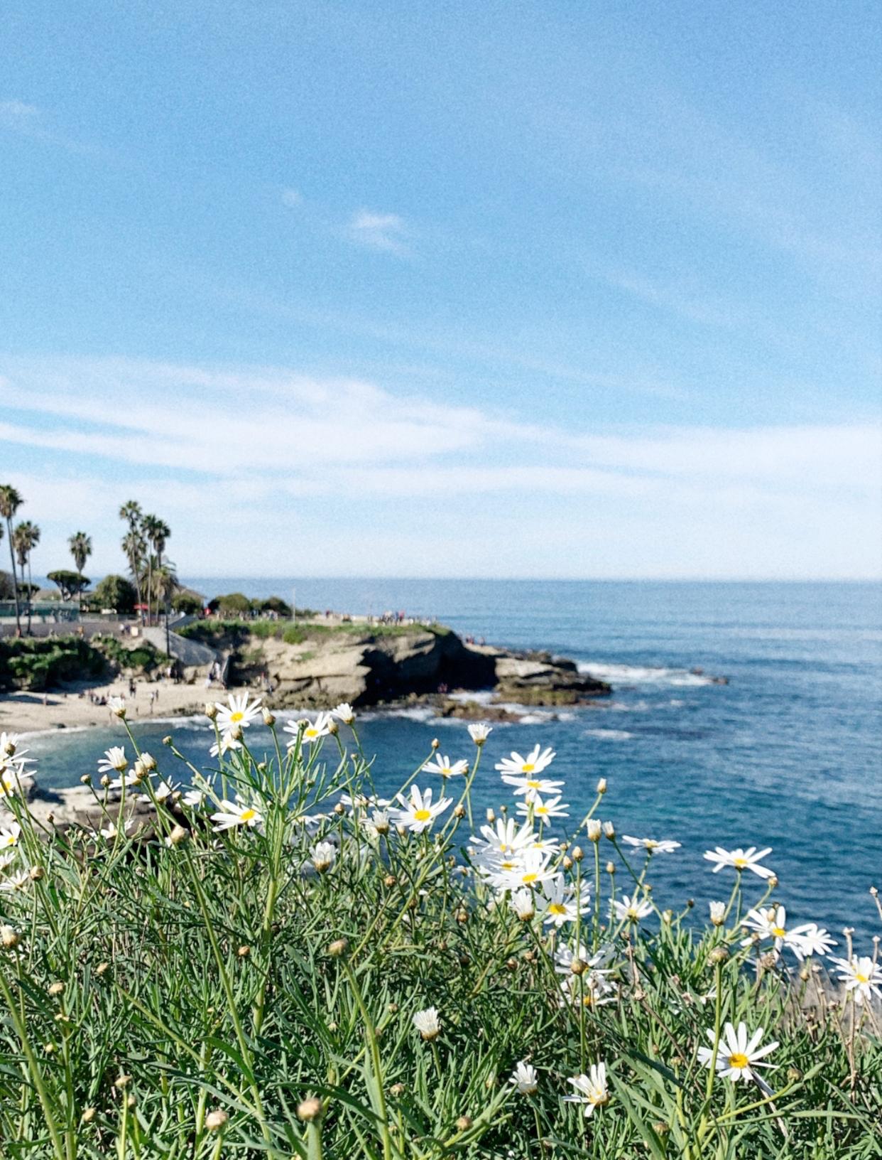 San Diego Hikes