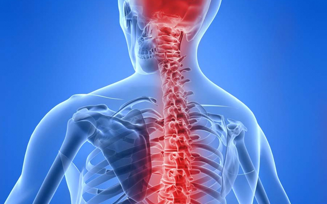 CENTRAL NERVOUS SYSTEM TRAINING