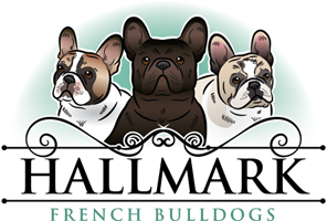 Hallmark French Bulldogs