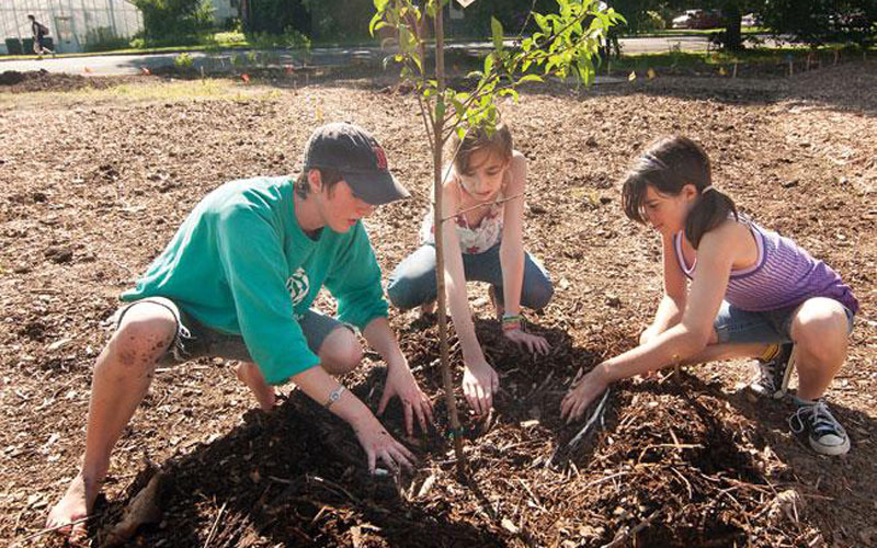 CIRCLE to plant 1350 trees!