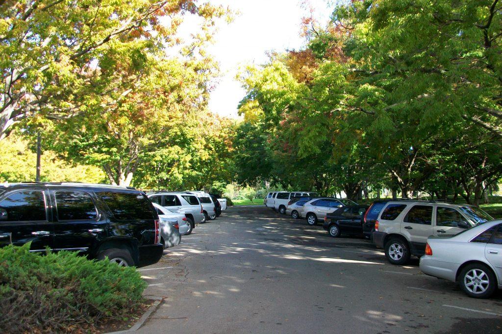 sac_pkglot_solar-shade_vs_trees_2