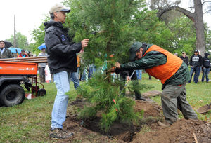 Tree Lodi partners with city for memorial trees, 2018 Arbor Day