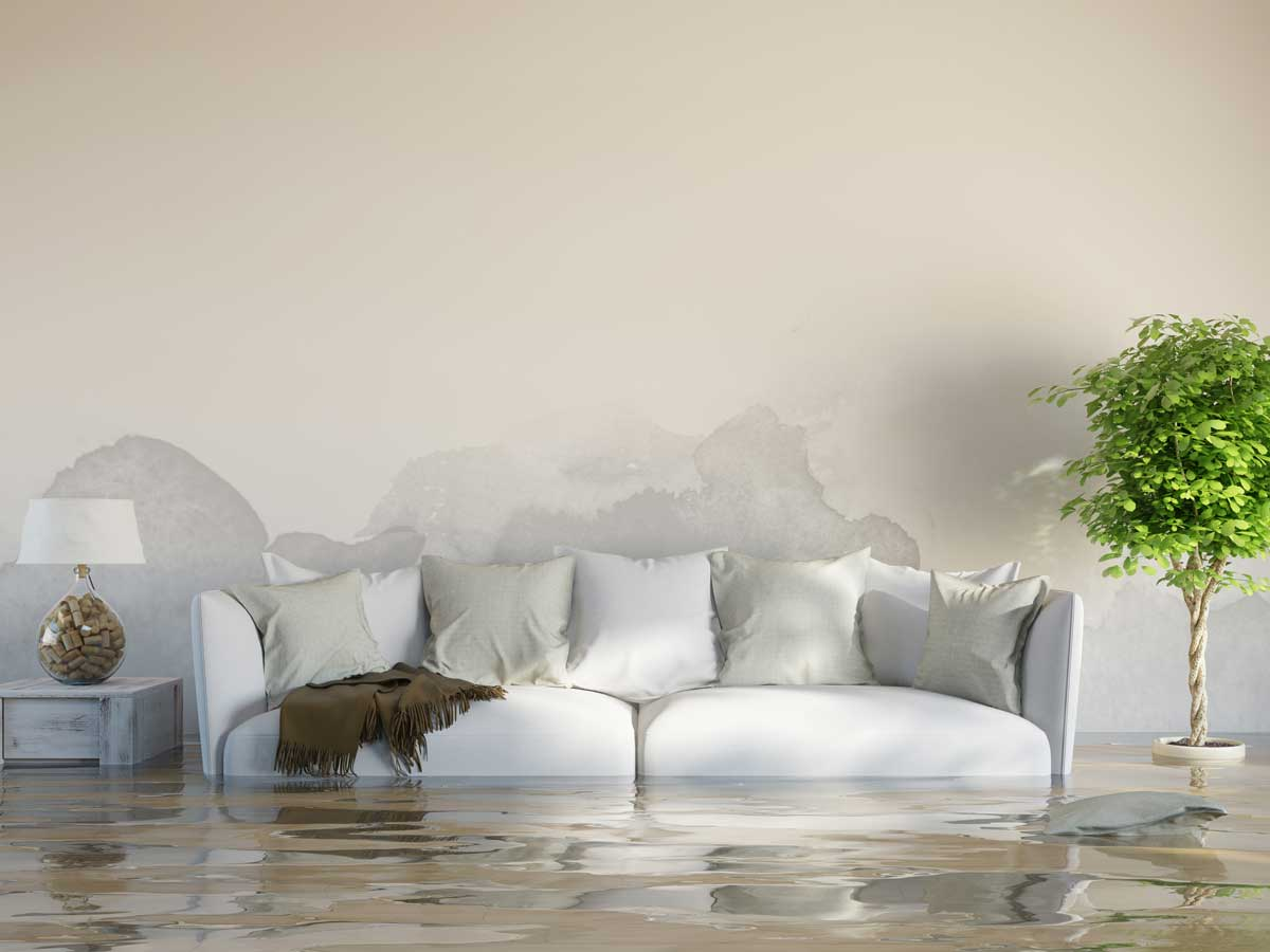 7 Common Misconceptions About Disaster Restoration