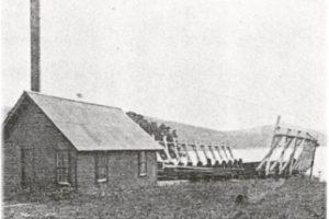 1928 (2)