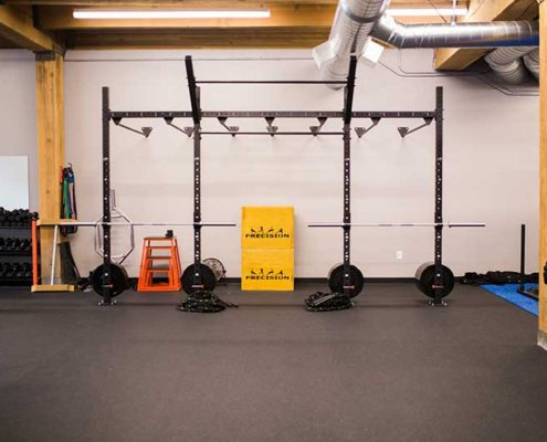 Weight Rack and Monkey Bars