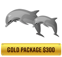 gold-package-300