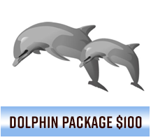 Dolphin Package