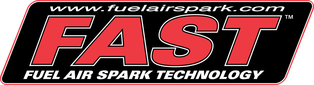 NEW FAST logo 2c