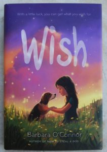 Wish lovely chapter book for kids
