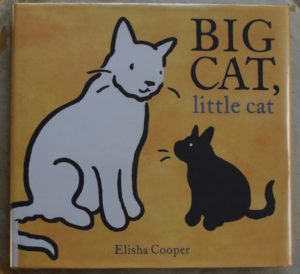 book about love and loss big cat little cat