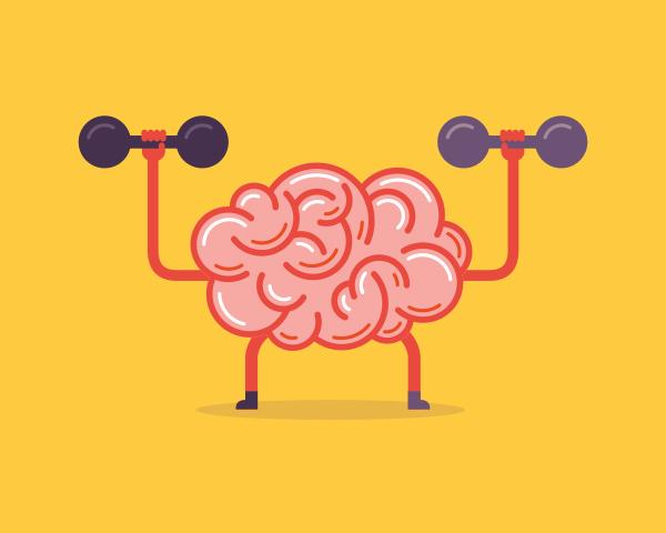BrainWeight600