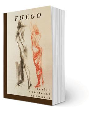 FuegoBook300