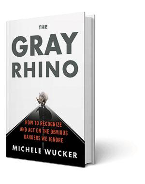 GrayRhino300