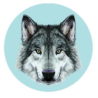 wolfercircle