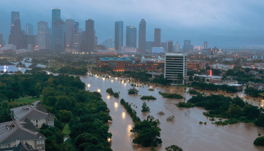 A Practical Guide to Flood Recovery