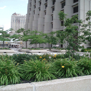 McNamara Federal-Building
