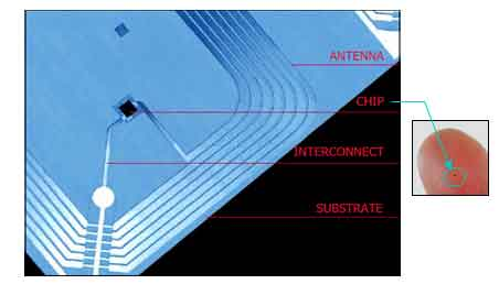 RFID tags include RFID chips and antennas. Antennas can be in various form factor, the image shows HF antenna and chip.