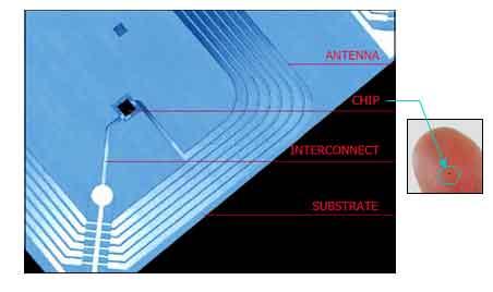 RFID CHIP (IC)