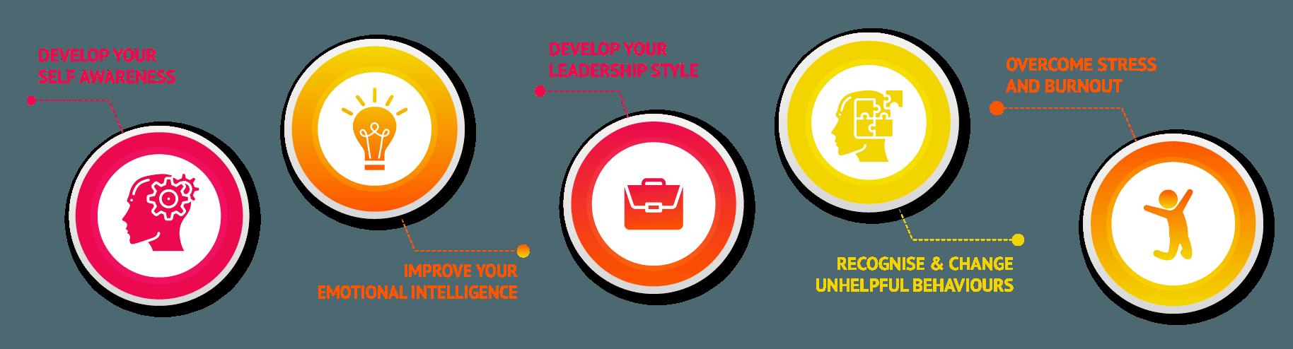 Website Coaching and Enneagram Infographic - Executive Coaching & Life Coaching