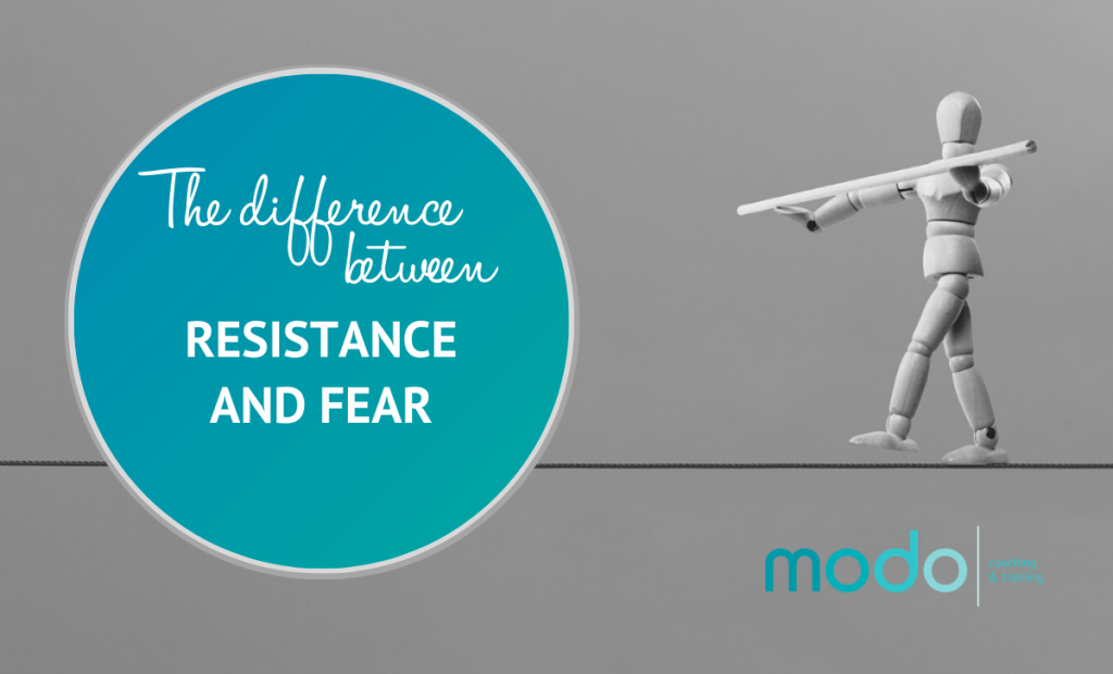 Difference Between Resistence and Fear 1024x620 - Professional Development Training