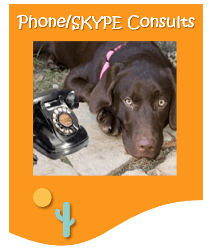 Best Dog Training Call 480-272-8816 for Dog Training in Chandler, AZ, Dog Training in Gilbert, AZ, Dog Training in Tempe, AZ, Dog Training in Mesa, AZ, Dog Training in Ahwatukee, AZ and surrounding areas. Be Kind To Dogs Kathrine Breeden