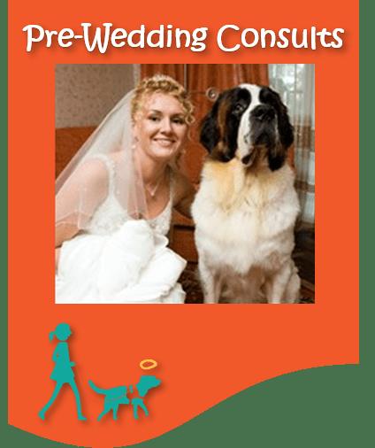 BKTD new pre wedding button