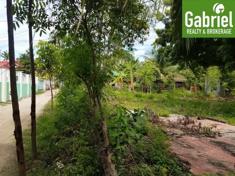 lot for sale in bantayan island