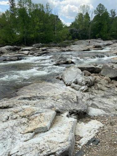 Au Sable River-2 Spring 2021