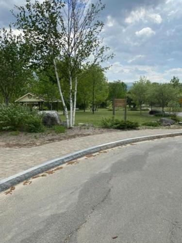 Douglas Memorial Park Spring 2021