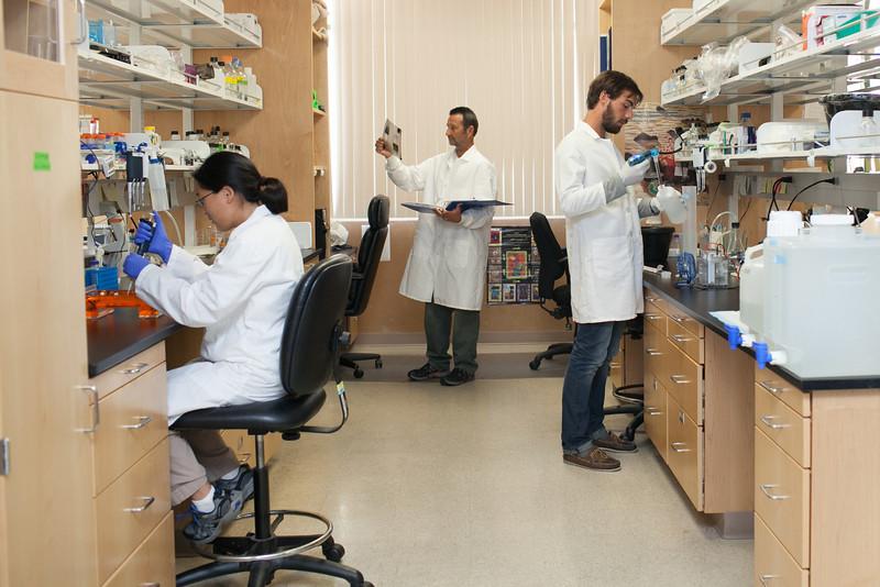 Researchers