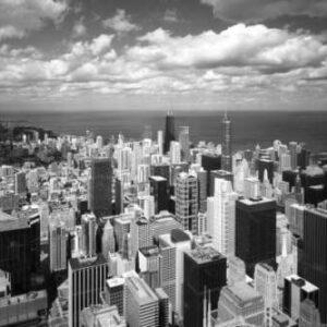 Chicago Lakeshore Stein