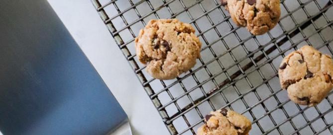 Vegan Chocolate Chip Peanut Butter Cookie Recipe
