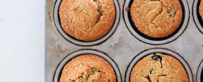 flourless muffins the modern day girlfriend