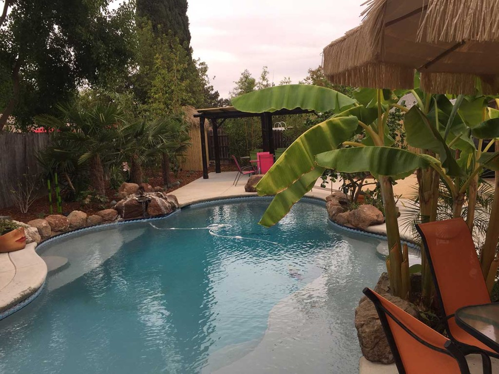 Tropical Backyard Redesign