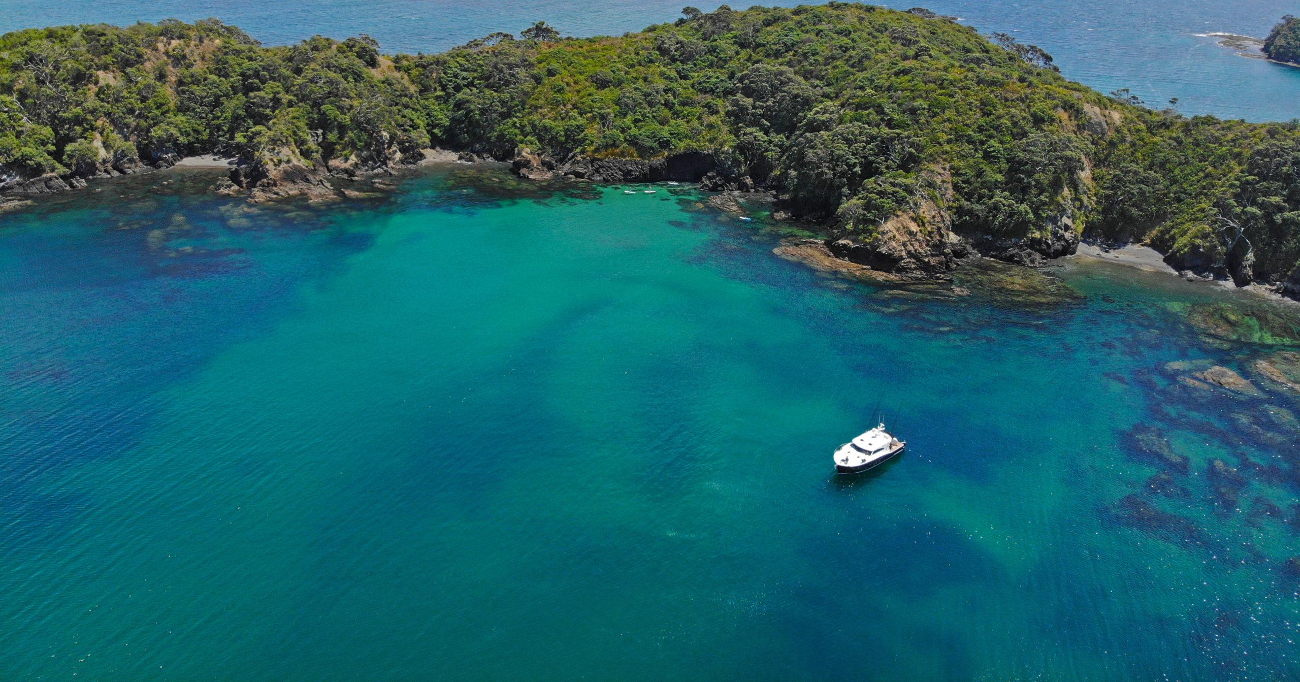 Ruru-Drone-Shot-with-island-in-background-scaled