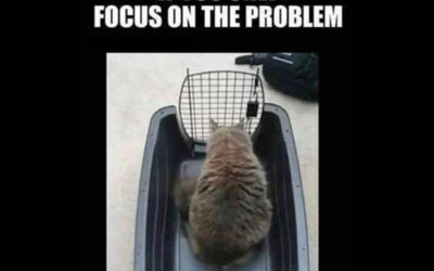 ARE YOU FOCUSED ON WHAT YOU FOCUS ON?