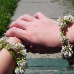 picture of clover bracelets
