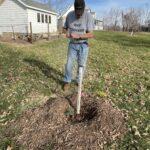 Man planting tree.