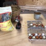 treat items for hens
