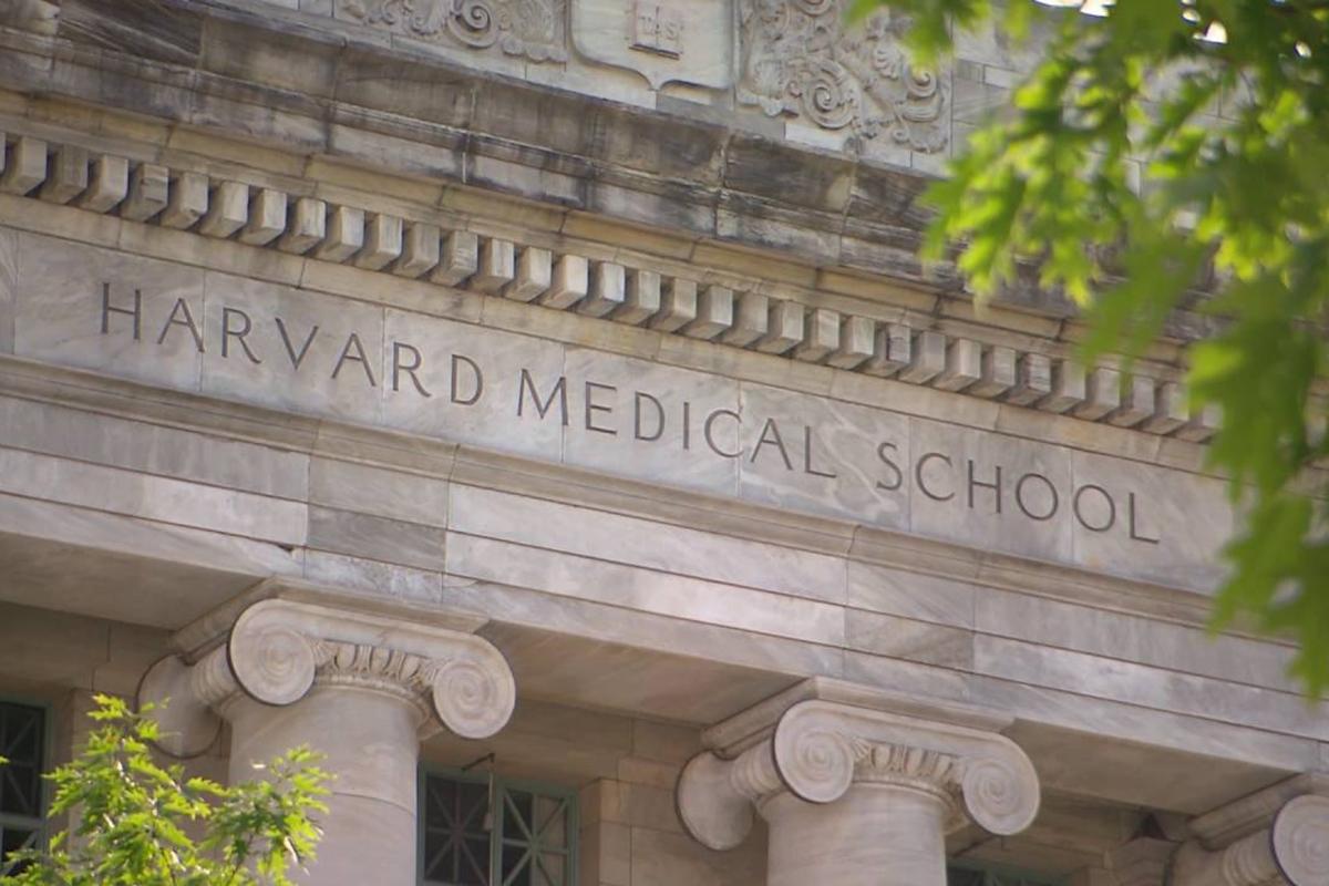 Ethics education Harvard bioethics course
