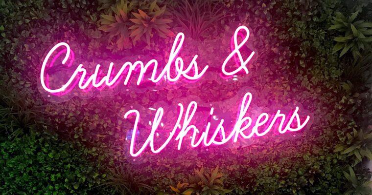 Crumbs & Whiskers | Kitten Lounge