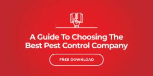 Commercial Pest Control Services in Cincinnati