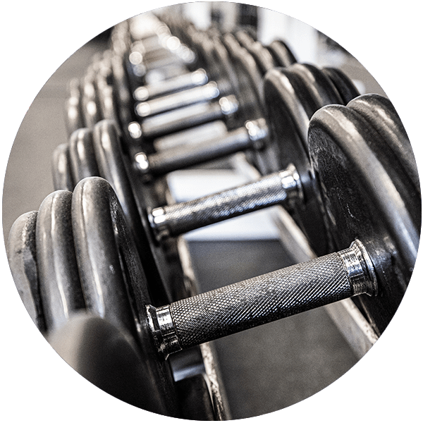 free weights at The Club Kona
